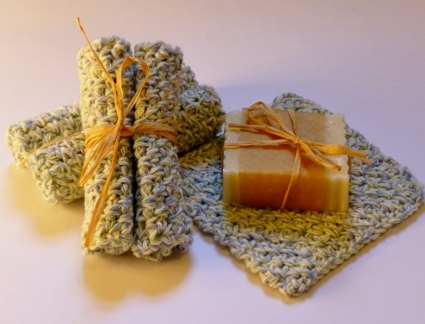 Best Little Dishcloth Ever by Darleen Hopkins